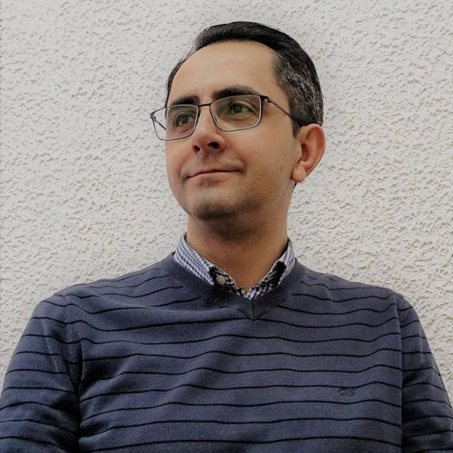prof. dr. sc. Darko Velić